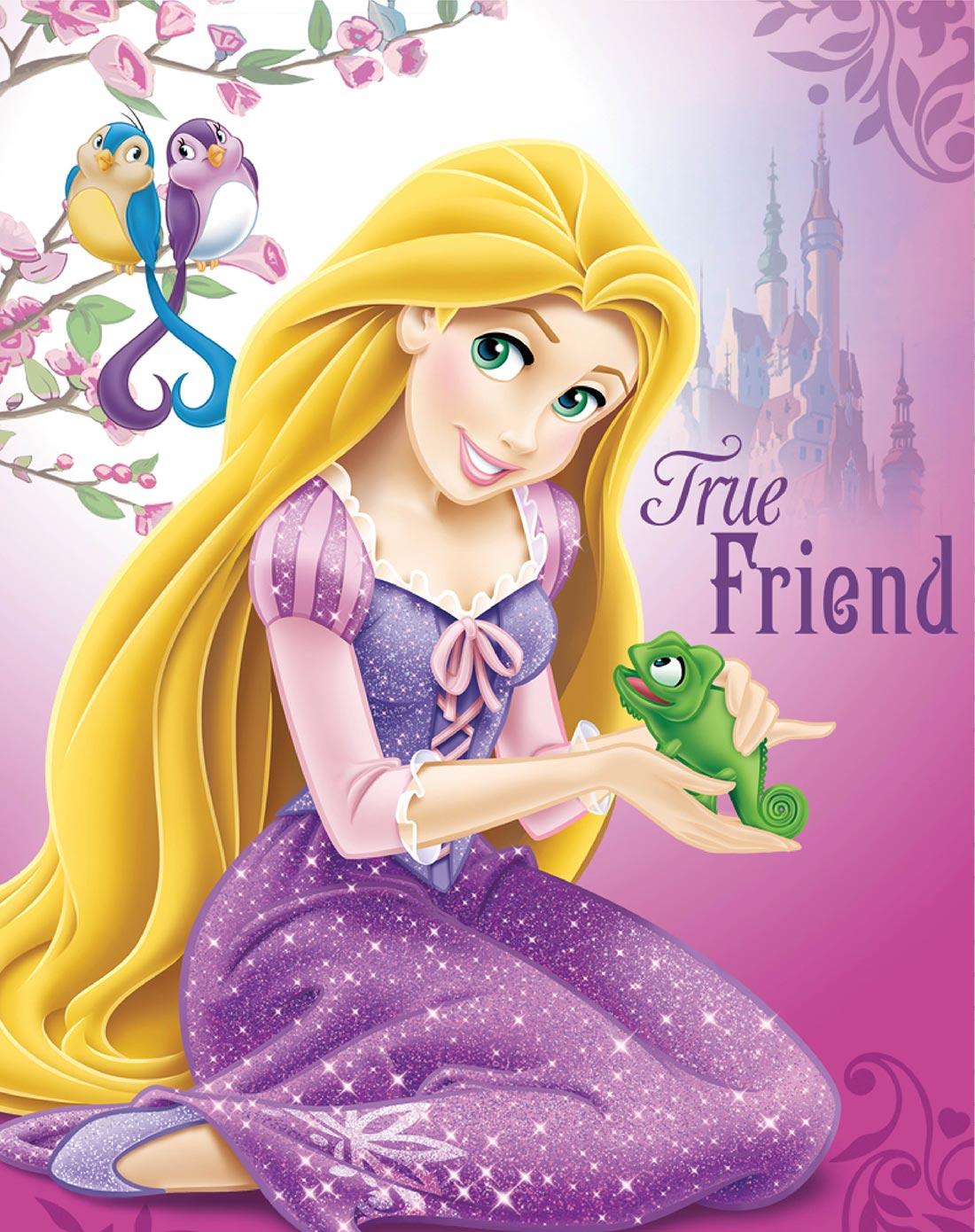 迪士尼 挂画-长发公主之动物情缘