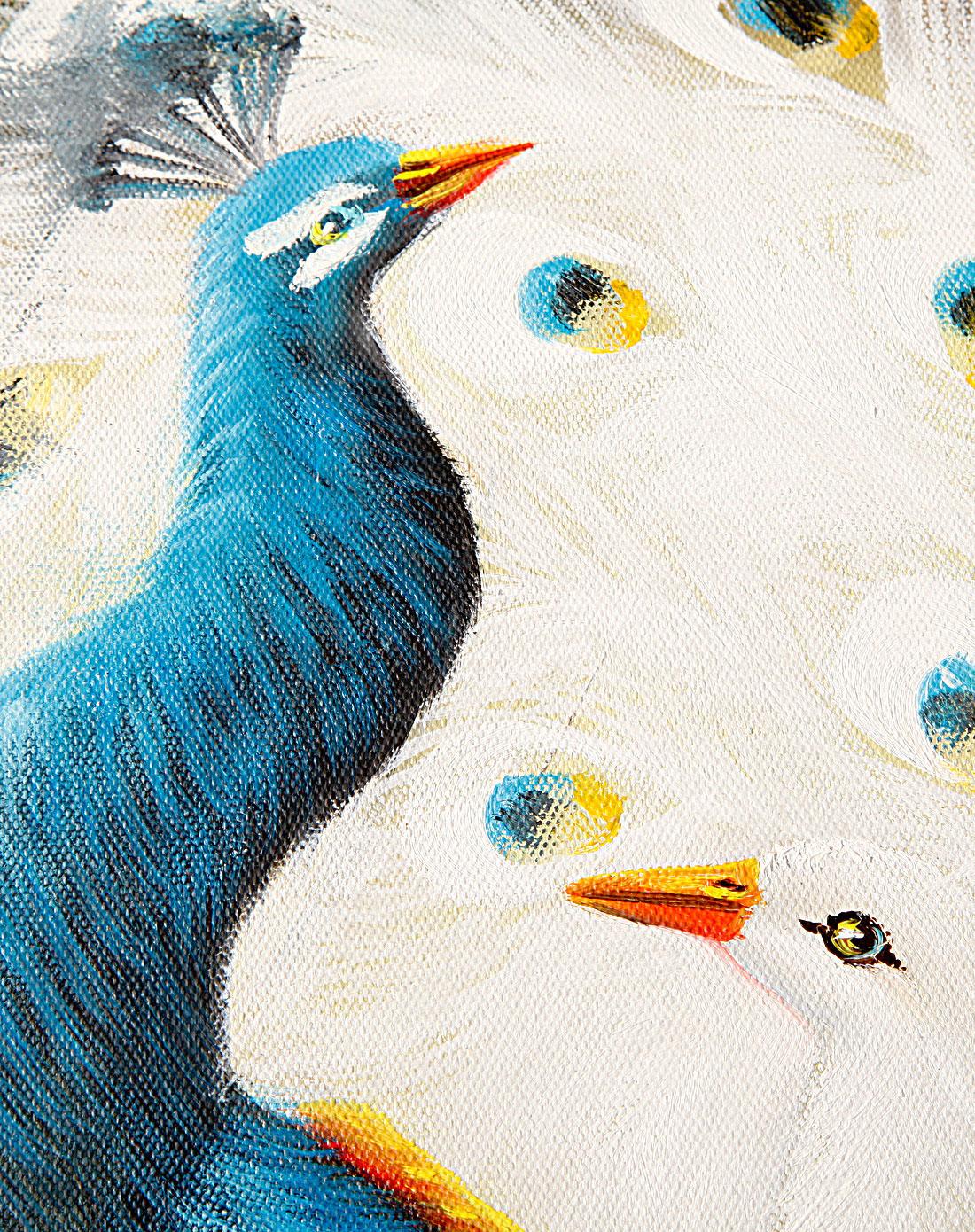 孔雀-纯手绘油画(单幅)
