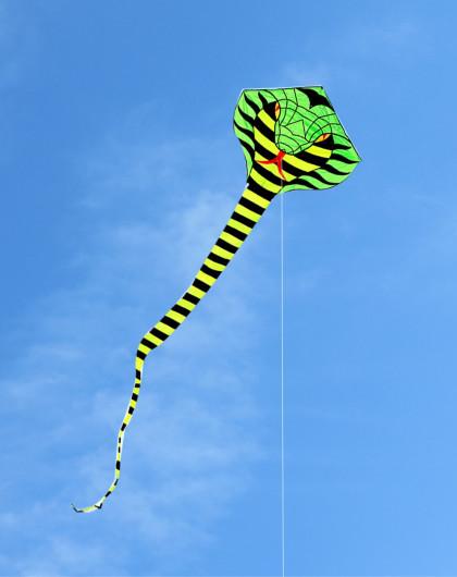 风筝&户外玩具专场直发货16米眼镜蛇绿头送100米拉力