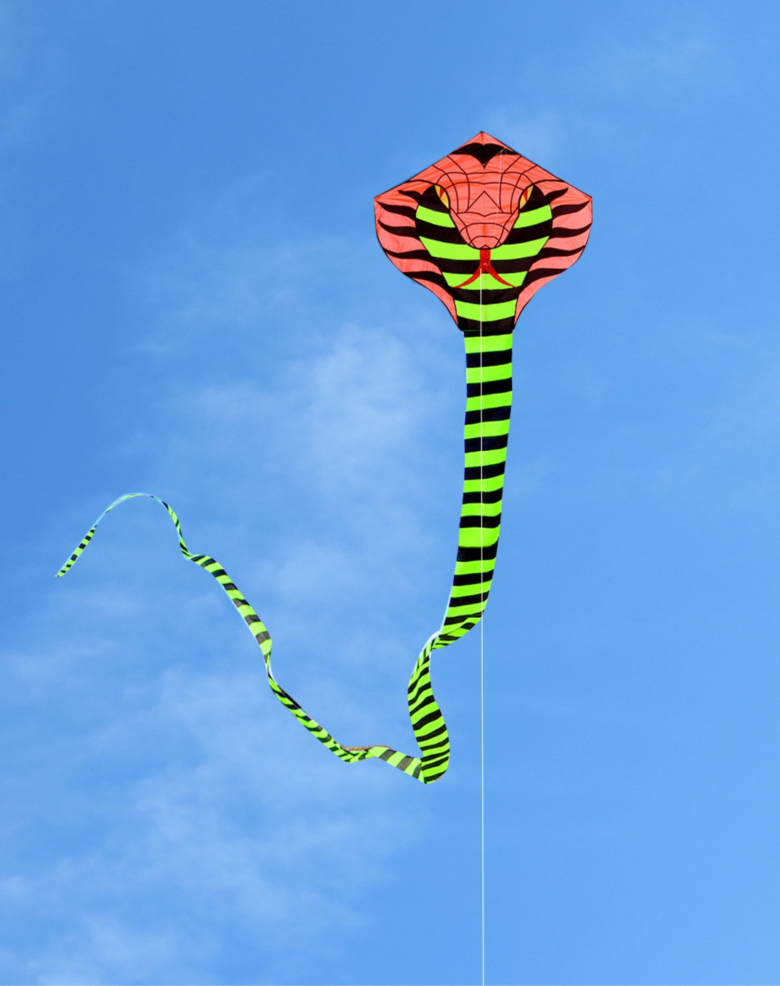 16米眼镜蛇红头送18cm轮盘 200米拉力线