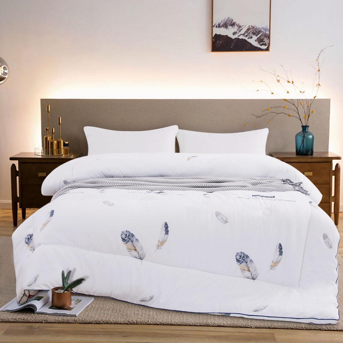 Ramada加厚冬被保暖空调被厚被子冬季床上保暖加厚冬被厚被子被芯CF171027