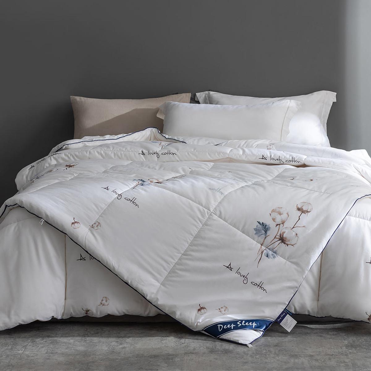 Ramada被子被芯冬被保暖加厚秋冬床上用品棉花被棉被冬被被芯被子CF171028